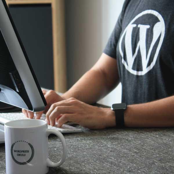 Error-WordPress-Pagina-no-disponible